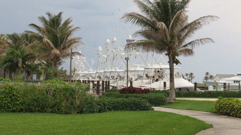 old-bahama-bay-marina